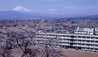 高校 韮山