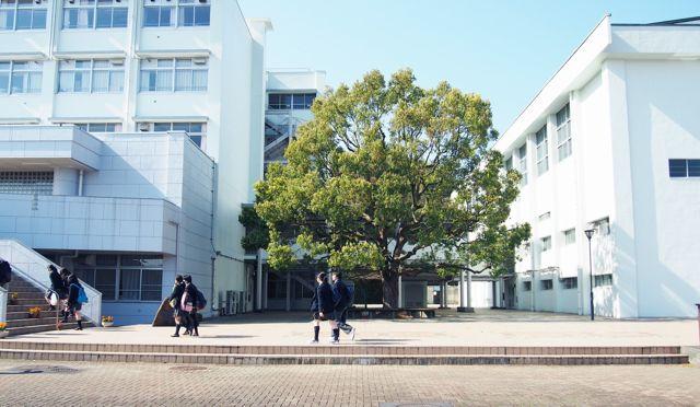 片倉 高校